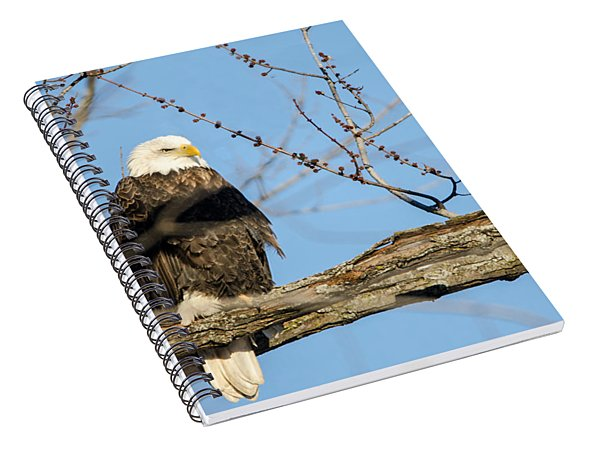 Spiral Notebook featuring the photograph Overlooking Freedom by Steven Santamour