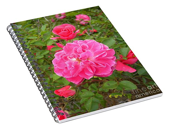 Passionate Pink Springtime Spiral Notebook