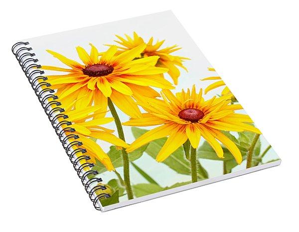 Patch Of Black-eyed Susan Spiral Notebook