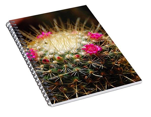 Petite Cactus Spiral Notebook