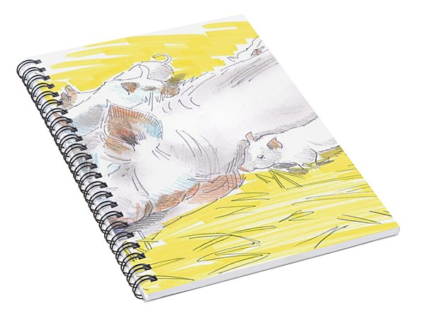 Pig Sow And Piglets Spiral Notebook