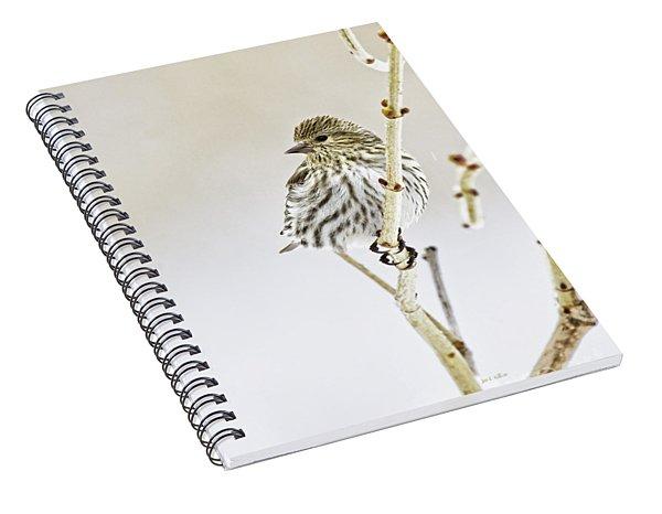 Pine Siskin Spiral Notebook