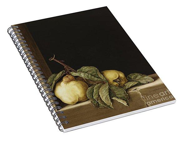 Quinces Spiral Notebook