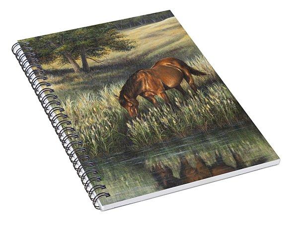 Reflections Spiral Notebook
