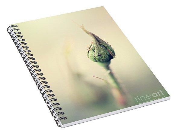 Remember Spiral Notebook