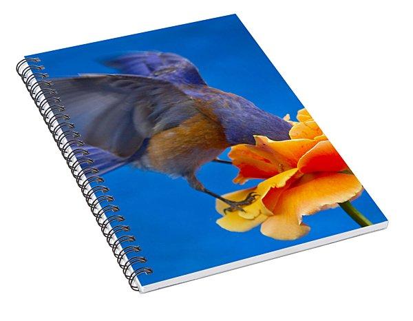 Rose Excavation Spiral Notebook