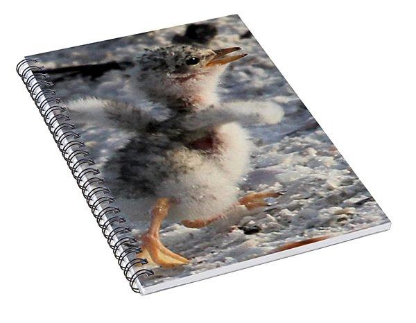 Running Free - Least Tern Spiral Notebook