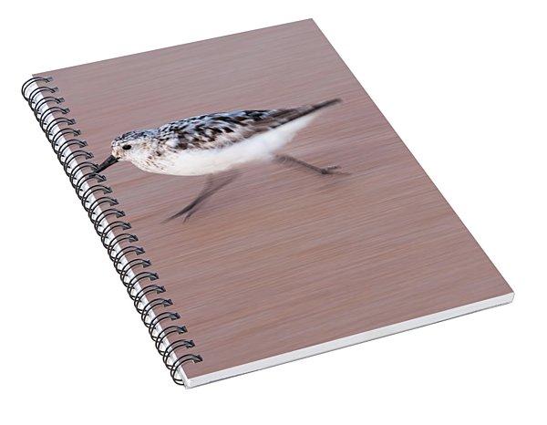 Sanderling On The Run Spiral Notebook