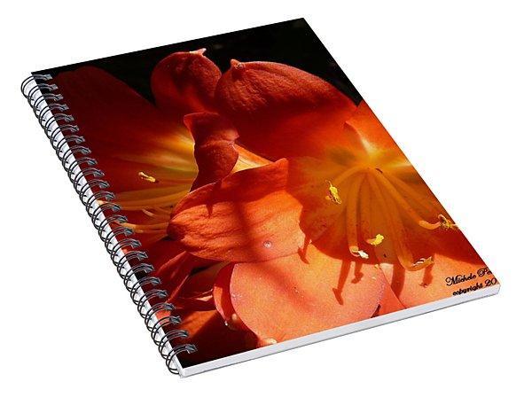 Shining Star Spiral Notebook