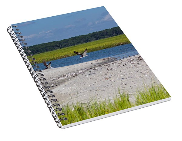 Shorebirds And Marsh Grass Spiral Notebook