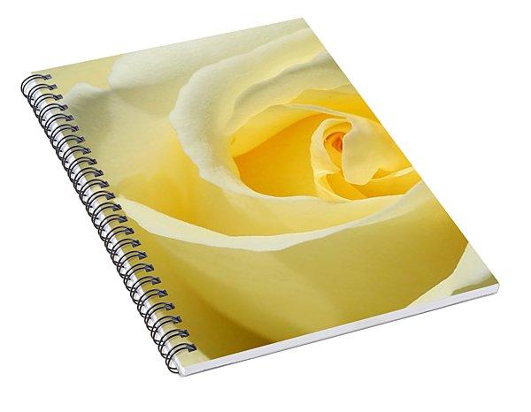 Soft Yellow Rose Spiral Notebook