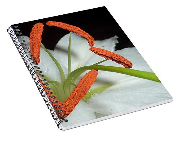 The Power 3 Spiral Notebook