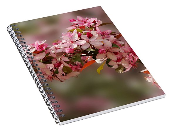 Cheery Cherry Blossoms Spiral Notebook