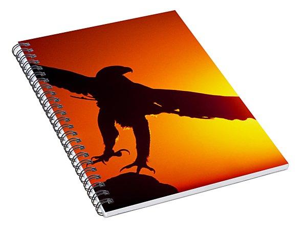 Sunrise Liftoff Golden Eagle Threatened Species Spiral Notebook