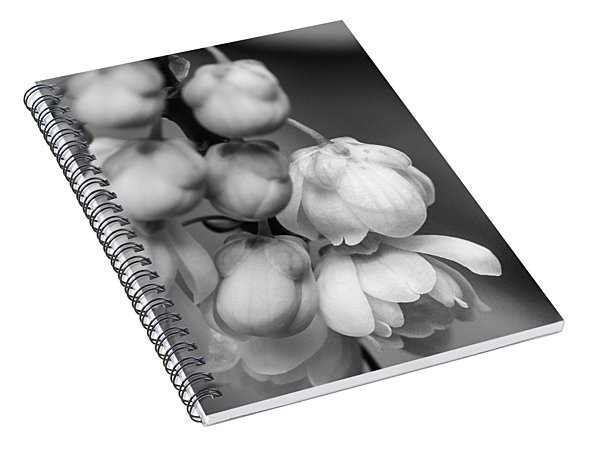 Sweet Mahonia Bloom Spiral Notebook
