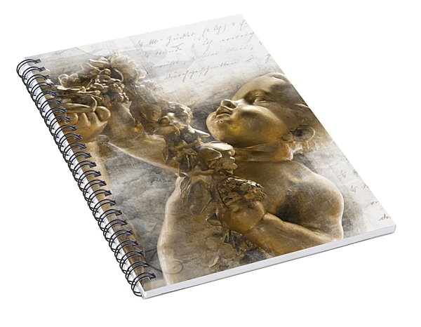 The Glory Of France Spiral Notebook