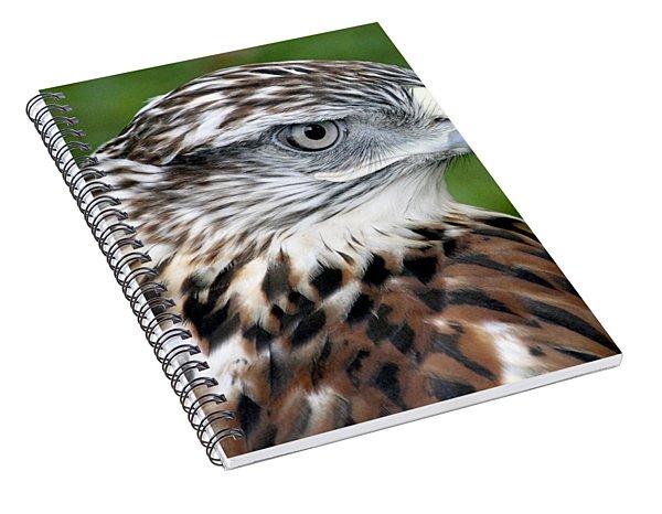 The Threat Of A Predator Hawk Spiral Notebook