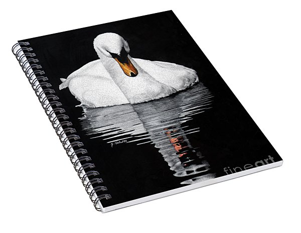 Tranquil Reflection Spiral Notebook