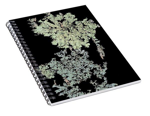 Tree Fungus Spiral Notebook