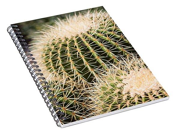 Triple Cactus Spiral Notebook