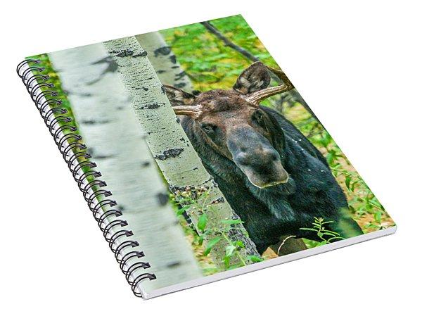 Vagabond Saddle Spiral Notebook