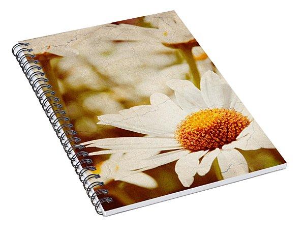 Vintage Daisy Spiral Notebook