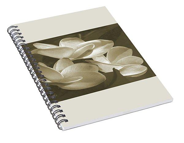 Vintage Plumeria Trio Spiral Notebook