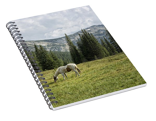 Wallowas - No. 2 Spiral Notebook