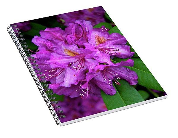 Washington Coastal Rhododendron Spiral Notebook