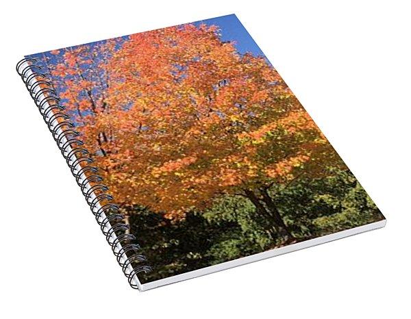Welcome Autumn Spiral Notebook