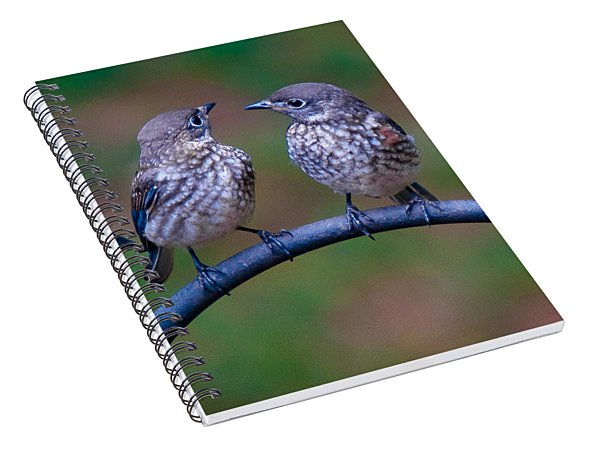 When's Dad Coming Back? Spiral Notebook
