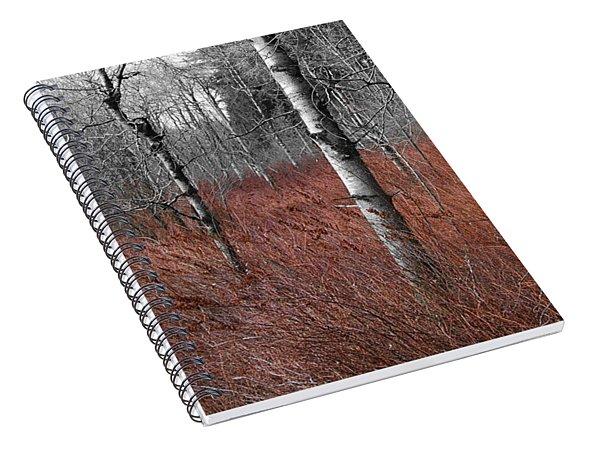 Winter Wetland Spiral Notebook