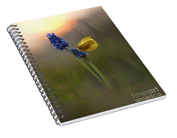 Yellow Butterfly On Grape Hyacinths Spiral Notebook