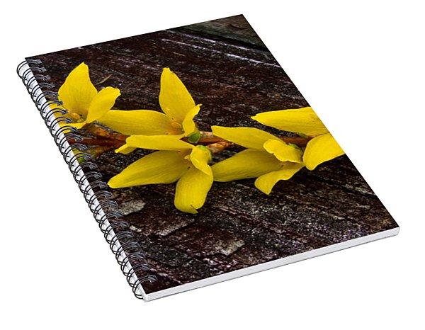 Yellow Forsythia Spiral Notebook