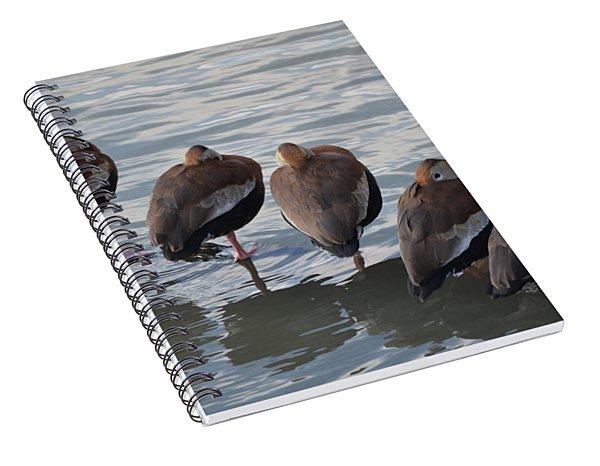 5 Bars Spiral Notebook