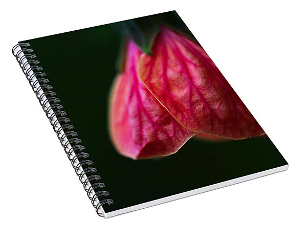 All In Vein Spiral Notebook