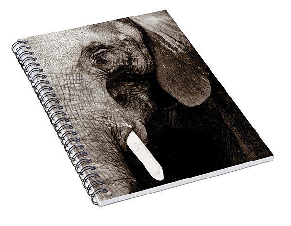 Ancient Face Spiral Notebook