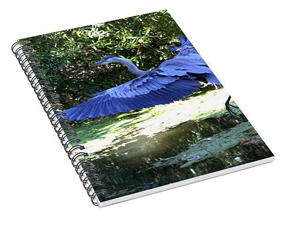 Big Blue In Flight Spiral Notebook