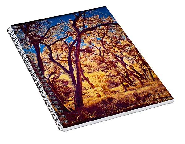 Cottonwoods Spiral Notebook