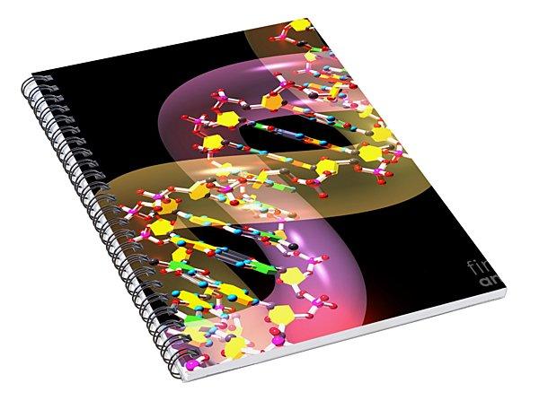Dna 38 Spiral Notebook