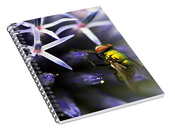 Green Metallic Fly On Globe Thistle Spiral Notebook