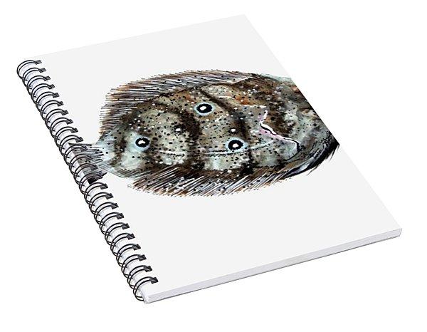 Gulf Flounder Spiral Notebook