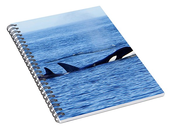 In The Great Wide Ocean Spiral Notebook