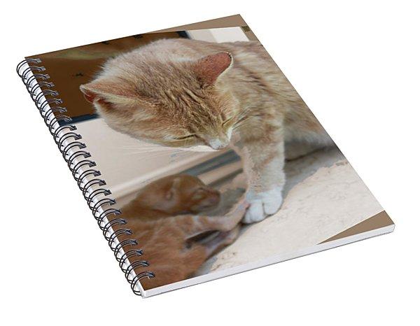 Mother And Kitten Spiral Notebook