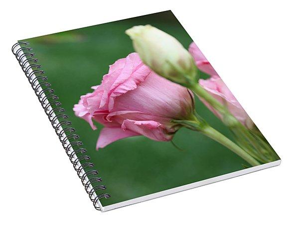 Pink Lisianthus Spiral Notebook