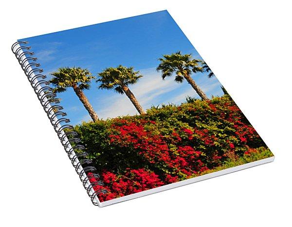 Pt. Dume Palms Spiral Notebook