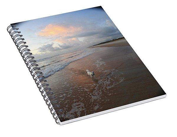 Rocko At Sunrise Spiral Notebook
