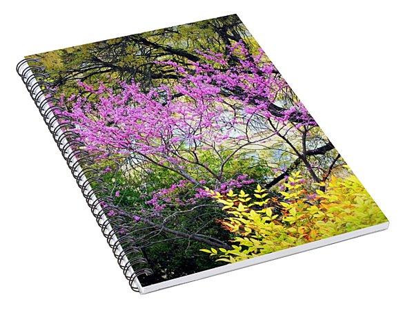 Spring Trees In San Antonio Spiral Notebook