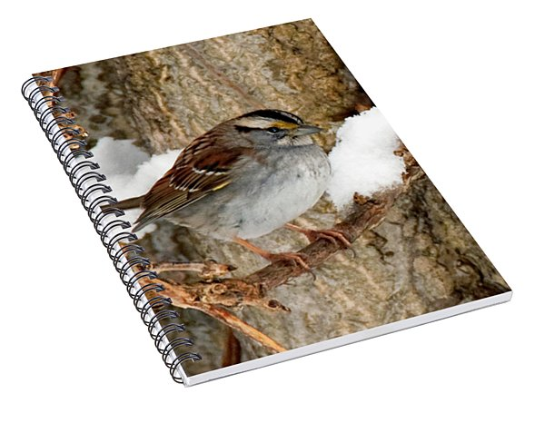 White Throat Spiral Notebook
