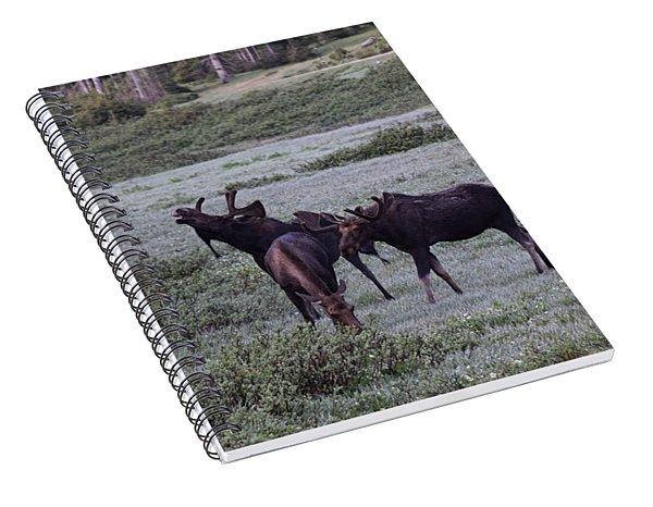 Moose Cameron Pass Co Spiral Notebook